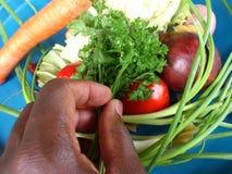 Groenten en culinair art. Stock Afbeelding