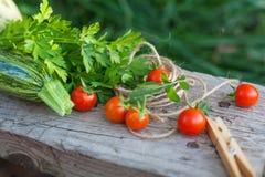 Groenten en greens in een tuin Royalty-vrije Stock Foto's