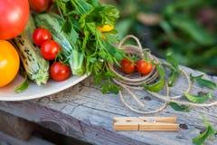 Groenten en greens in een tuin Royalty-vrije Stock Foto