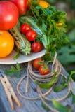 Groenten en greens in een tuin Stock Afbeelding
