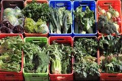 Groenten en salades stock afbeeldingen