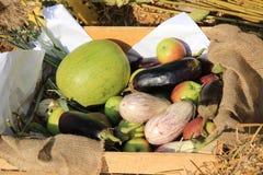 Groenten en vruchten in een mand Stock Foto