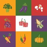 Groenten en Vruchten geplaatste pictogrammen en tekens Royalty-vrije Stock Foto's