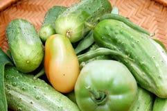 groenten in het zuur komkommer Royalty-vrije Stock Foto's