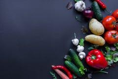 Groenten op de lijst Verse wortelen, tomaat, ui en greens op de natte houten lijst Royalty-vrije Stock Afbeeldingen