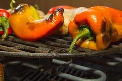 Groenten op een electrikbarbecue Royalty-vrije Stock Afbeeldingen