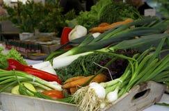 Groenten op een lijst Spaanse peper, peper, tomaten, komkommers Stock Afbeelding