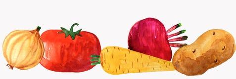 Groenten op een witte achtergrond stock afbeeldingen