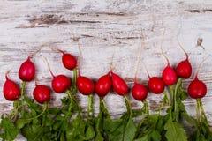 Groenten op oud donker bureau: babywortel, knoflook, bieten, radijzen Royalty-vrije Stock Foto