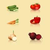 Groenten: tomaten, wortelen, peper, komkommer, ui Royalty-vrije Stock Afbeeldingen