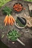Groenten van tuin Stock Afbeelding