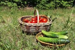 Groenten voor picknick Royalty-vrije Stock Foto's