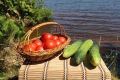 Groenten voor picknick Stock Afbeelding