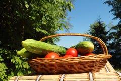 Groenten voor picknick Stock Foto's