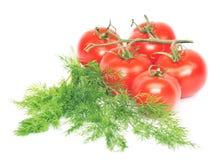Groenten, witte achtergrond Stock Afbeeldingen