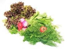 Groenten, witte achtergrond Stock Afbeelding