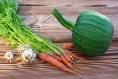 Groentenoogst in tuin Stock Fotografie