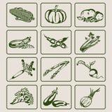 Groentenpictogrammen Royalty-vrije Stock Foto's