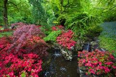 Groentuin met kleurrijke bloem wordt gevuld die Royalty-vrije Stock Foto