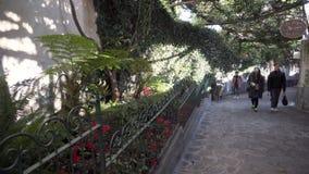 Groep Aziatische toeristen op de groene steeg in Positano stock footage