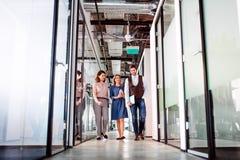 Groep bedrijfsmensen die in een bureaugebouw lopen, het spreken royalty-vrije stock foto