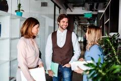 Groep bedrijfsmensen die zich in een bureaugebouw bevinden, het spreken stock afbeeldingen