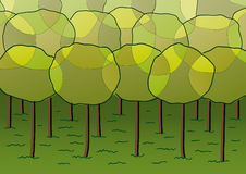 Groep bomen Stock Foto's