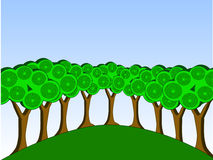 Groep bomen Royalty-vrije Stock Foto's