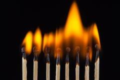 Groep brandwond en onverbrande die gelijken, op zwarte achtergrond wordt geïsoleerd stock afbeelding