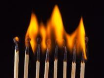 Groep brandwond en onverbrande die gelijken, op zwarte achtergrond wordt geïsoleerd stock foto's