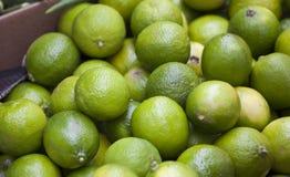 Groep citroenen Stock Afbeeldingen
