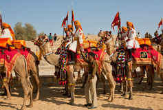 Groep de kameelruiters in Indische uniformen Stock Afbeelding