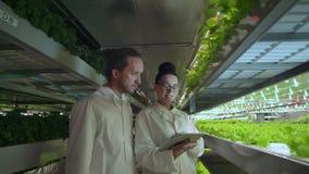 Groep de moderne wetenschapper van de wetenschappersbiotechnologie in wit kostuum met tablet voor werkende organische hydroponic  stock video