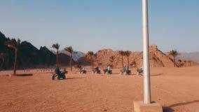 Groep de raceauto's die van de vierlingfiets in woestijn drijven stock videobeelden