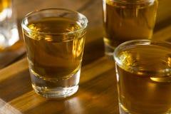 Groep de Schoten van de Bourbonwhisky stock fotografie
