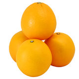 Groep de sinaasappel van Valencia of Navelsinaasappel stock fotografie