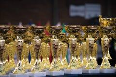 Groep de trofeeën Royalty-vrije Stock Afbeeldingen