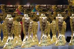 Groep de trofeeën Royalty-vrije Stock Fotografie