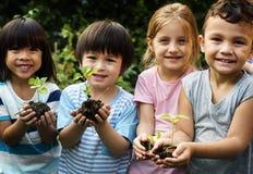 Groep de vrienden van kleuterschooljonge geitjes het tuinieren landbouw stock afbeelding