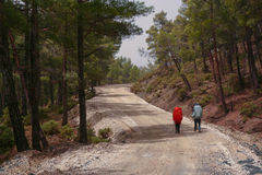Groep die backpackers met regen-behandelde rugzakken op een landweg in het bergbos lopen Stock Afbeeldingen