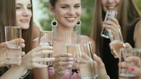 Groep die modellen champagne van glazen drinken bij stock footage