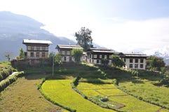 Groep Dorpshuizen Uit Bhutan Royalty-vrije Stock Fotografie