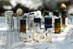 Groep etherische olieflessen stock foto
