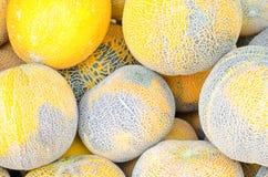 Groep gele watermeloenen stock afbeeldingen