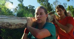Groep geschikte vrouwen die een zwaar houten logboek dragen tijdens hinderniscursus stock footage