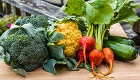 Groep groenten van de tuin Stock Afbeeldingen