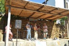 Groep Harmonika, Doedelzak en Palmen in de Partij van de Doedelzak in Quinta De Cancelada royalty-vrije stock foto