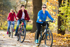 Groep het biking Stock Foto
