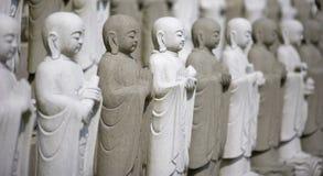Groep het Mediteren Buddhas Stock Foto's