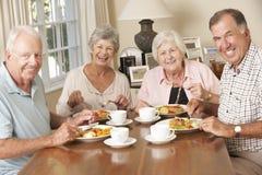 Groep Hogere Paren die van Maaltijd samen genieten Stock Foto's